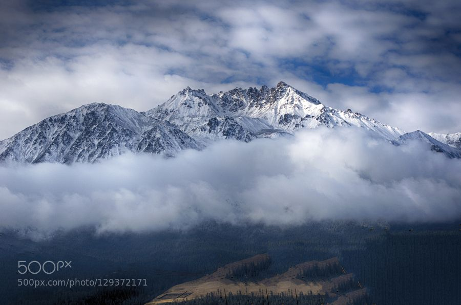 snowberg (from China) 祁连山 by papaver #nature