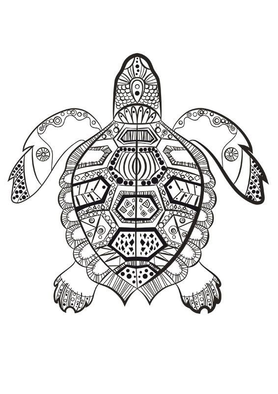 La tortue marine colorier du dimanche in the sea color me color - Coloriage tortue ...