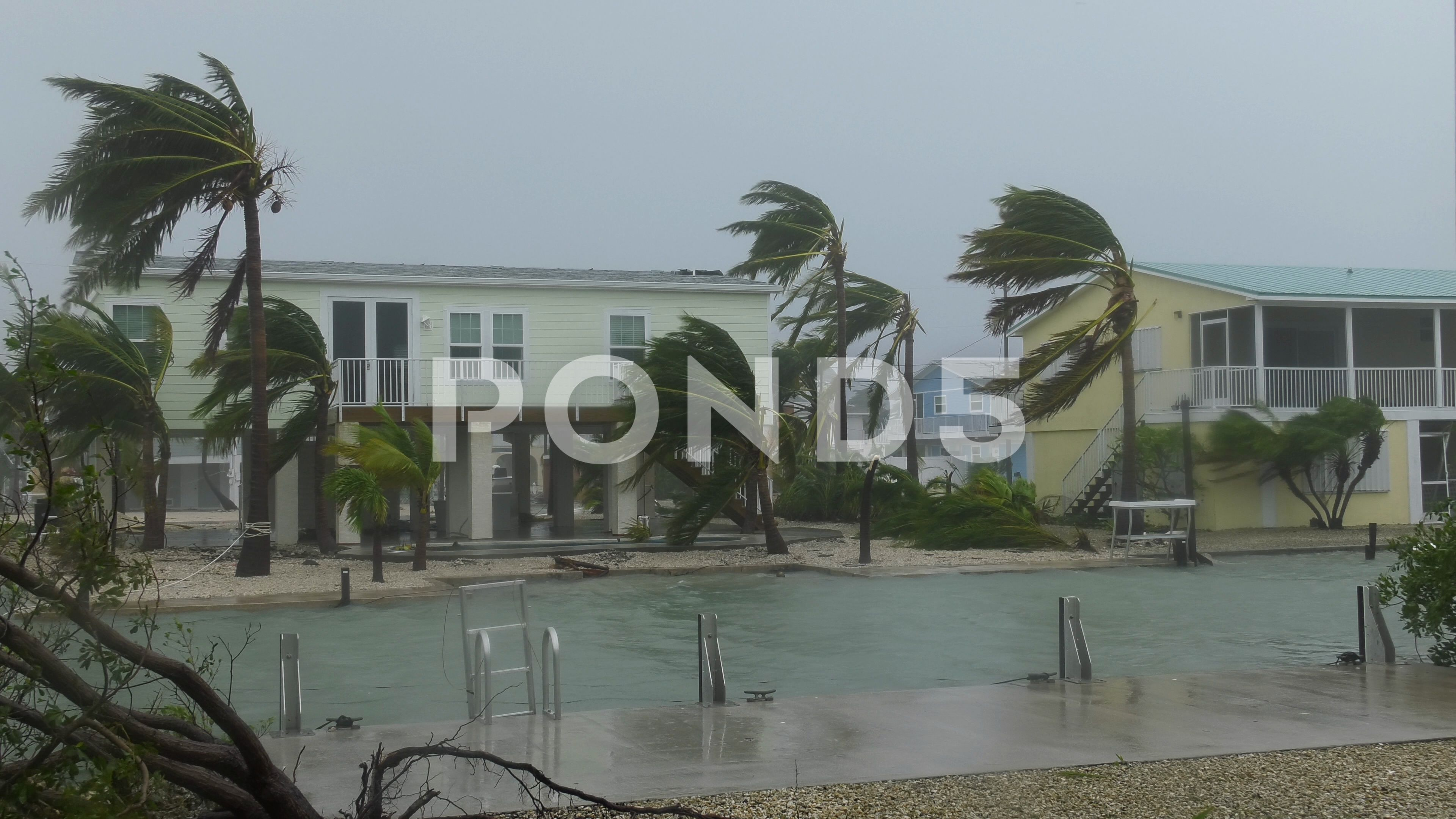 Hurricane Winds Subside As The Eye Nears Stock Footage Ad Subside Winds Hurricane Eye Hurricane Winds Creative Flyer Design Wind