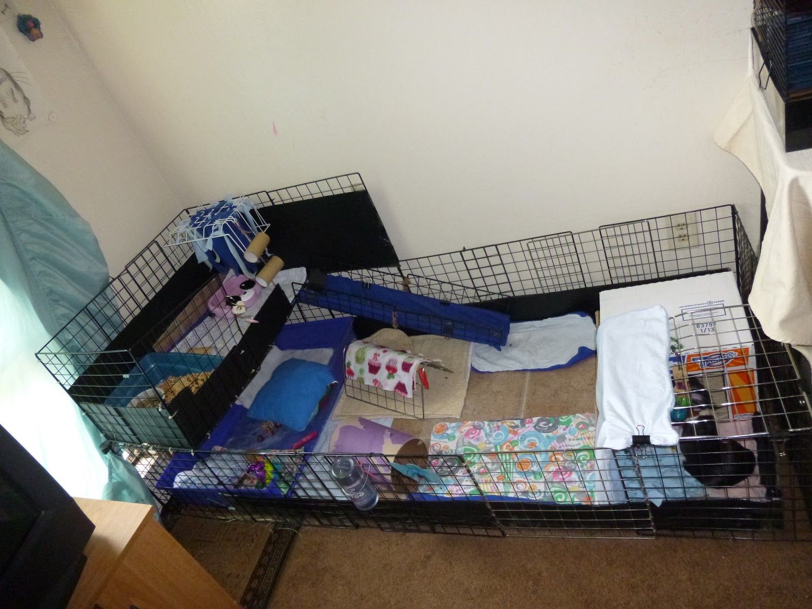 Awesome ideas for guinea pig hutch and cages diy guinea for 2 story guinea pig cages for sale