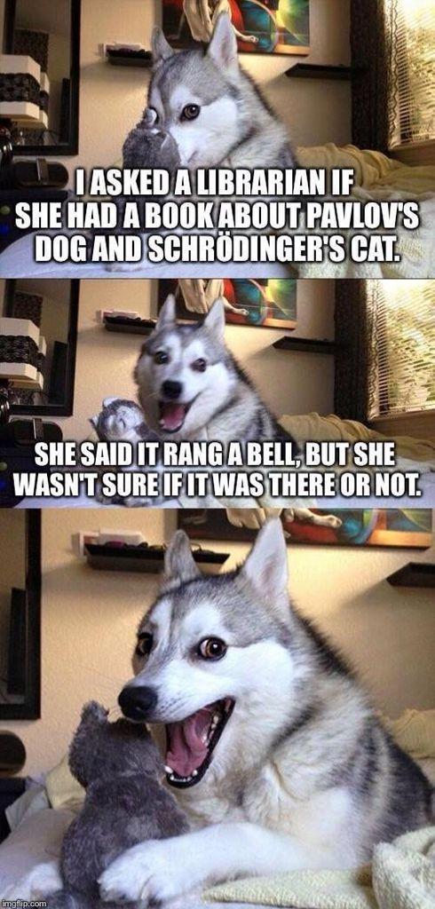 Pavlov's Dog/Schroedinger's Cat