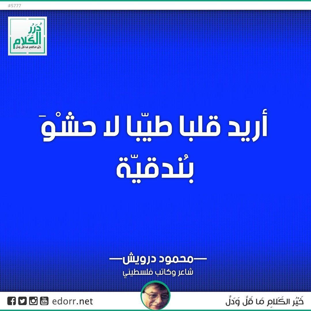 أريد قلبا طيبا لا حشو بندقية محمود درويش شاعر وكاتب فلسطيني درر الكلام درر Desktop Screenshot Screenshots Desktop