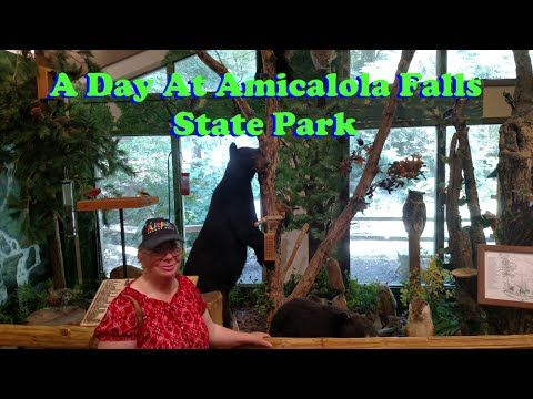 A Day at Amicalola Falls State Park with Crazy Dave's Crew