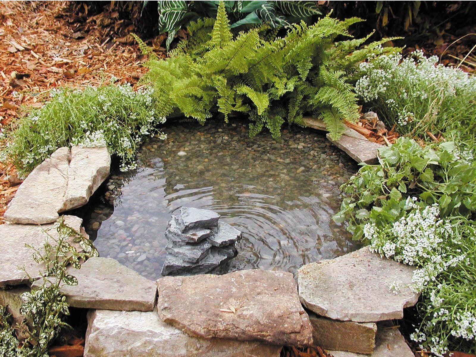 cr er un bassin de jardin petit bassin pinterest bassin de jardin bassin et cr er. Black Bedroom Furniture Sets. Home Design Ideas