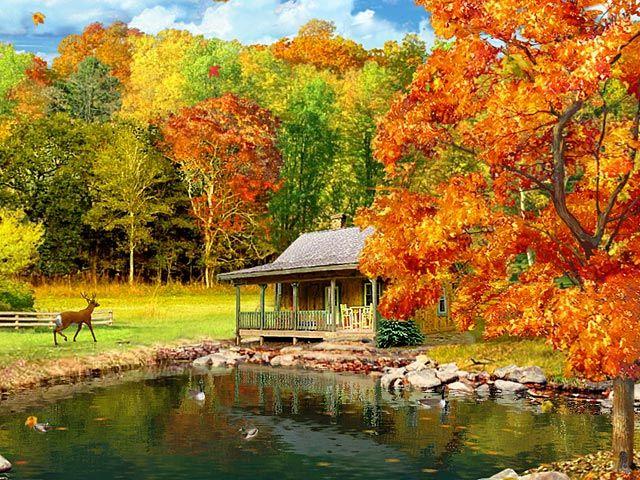 nature Vibrant Autumn Pinterest