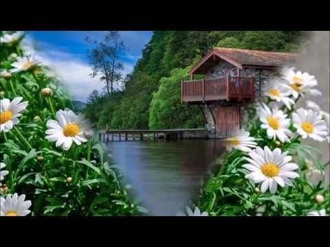 Good Morning Beautiful Nice Animation With Natural Scenery Wish