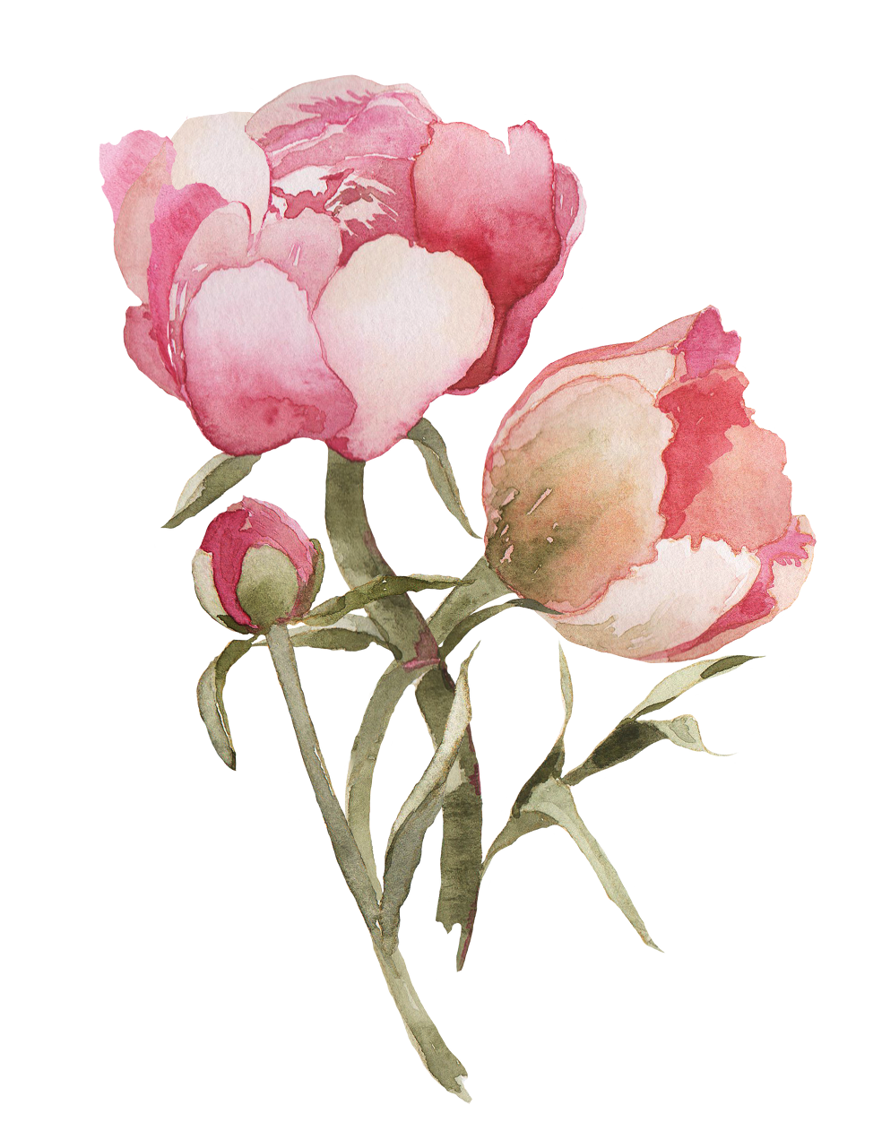Resultado de imagem para flower tumblr png