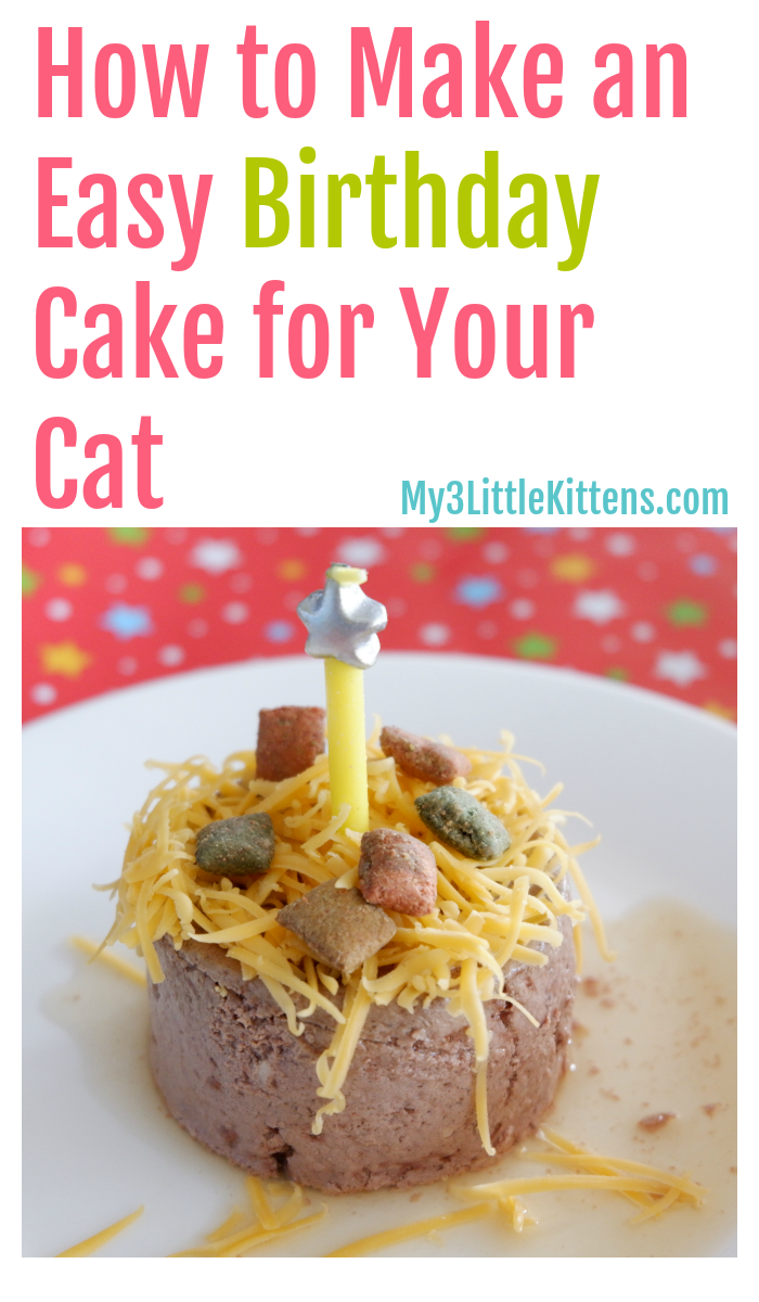 Sensational How To Make An Easy Birthday Cake For Your Cat With Images Birthday Cards Printable Opercafe Filternl