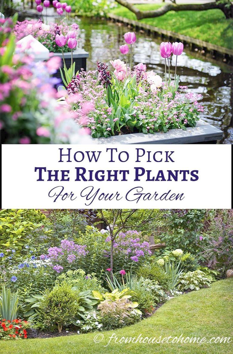 Landscape Garden Design Kent Though Garden Landscaping Plans Small Garden Landscaping Ideas South Africa Ev Part Shade Plants Plants Low Maintenance Garden