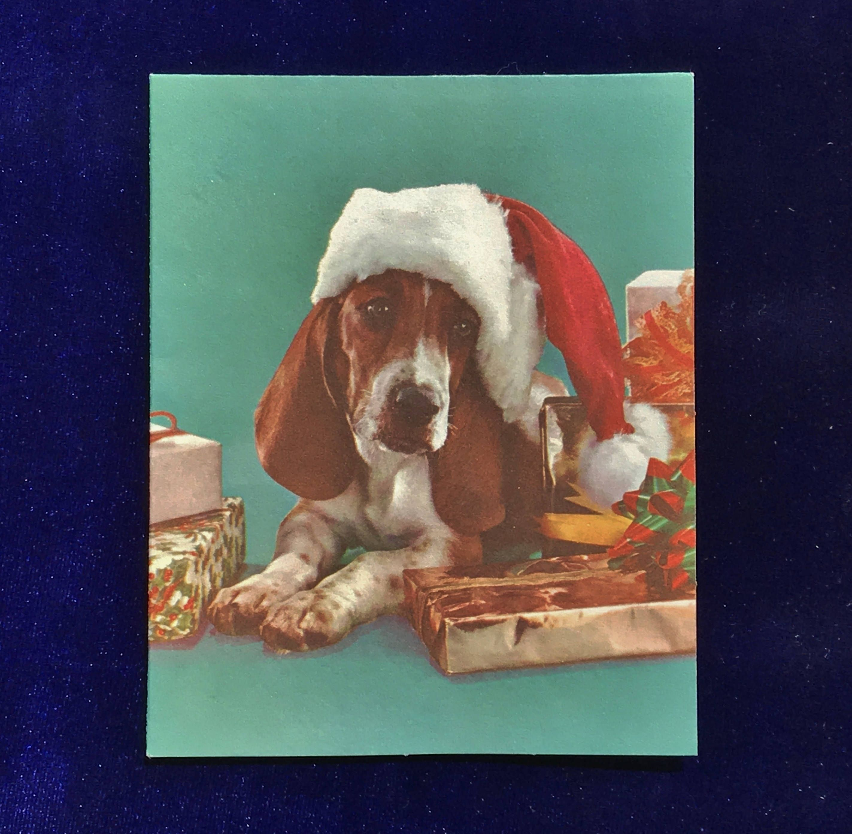 1966 Basset Hound Dog Santa Hat Christmas Card | Basset hound
