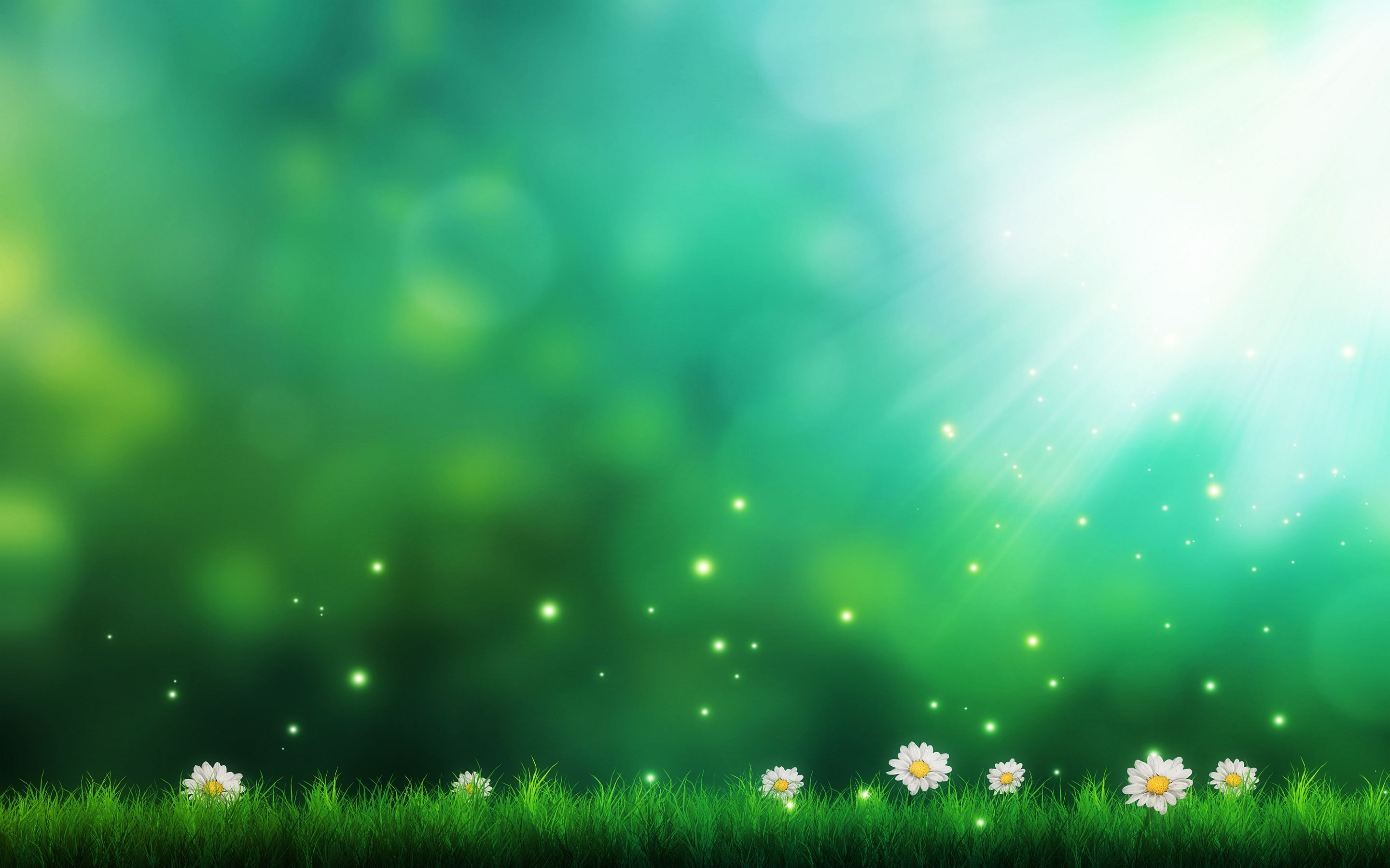 Daisies Green Background Nature Backgrounds Iphone Green Nature Background Hd Wallpaper