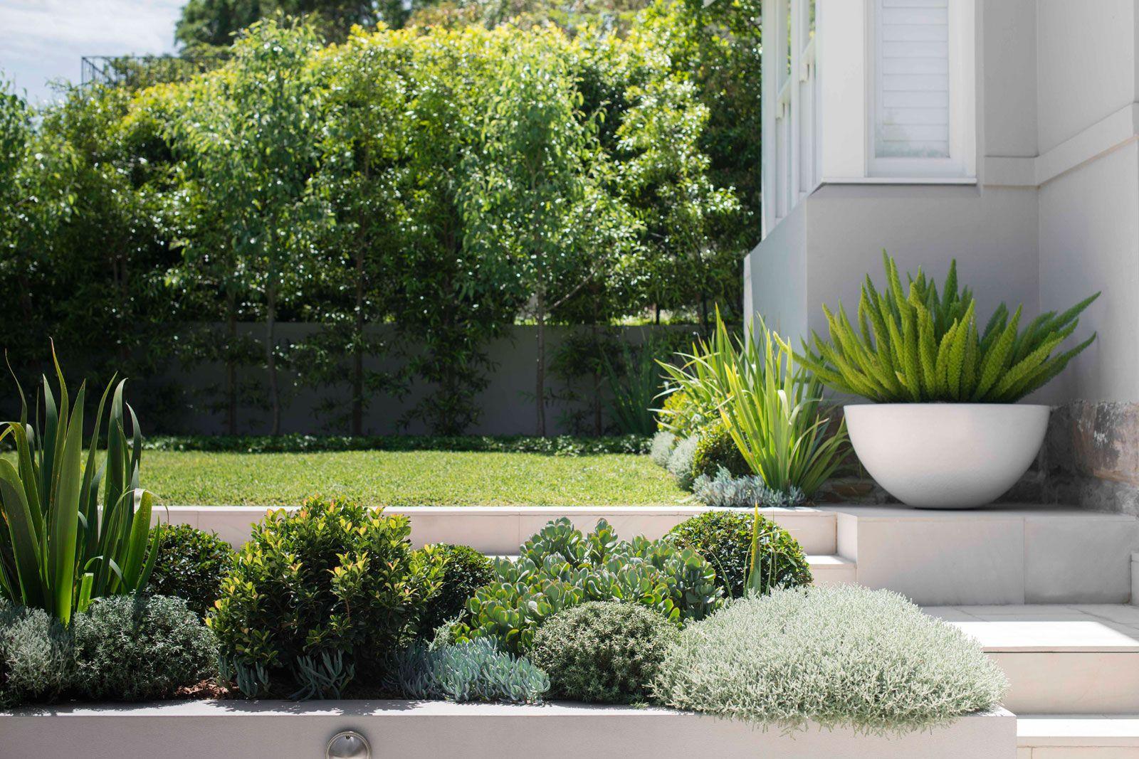 Randwick Landscape Architecture Sloped Garden Coastal Gardens
