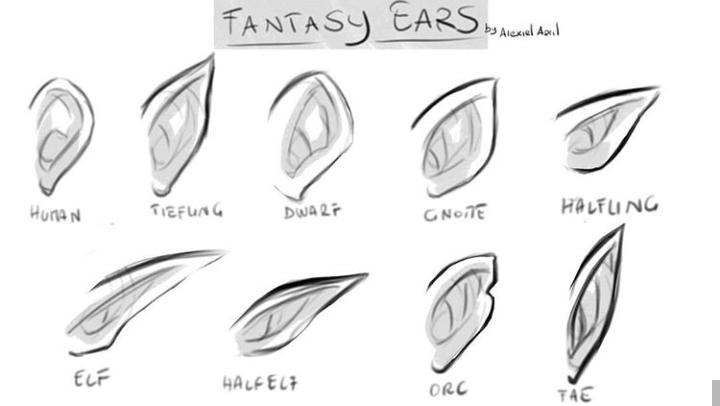 Fantasy Ears In 2020 Elf Drawings Art Reference Art Reference Photos