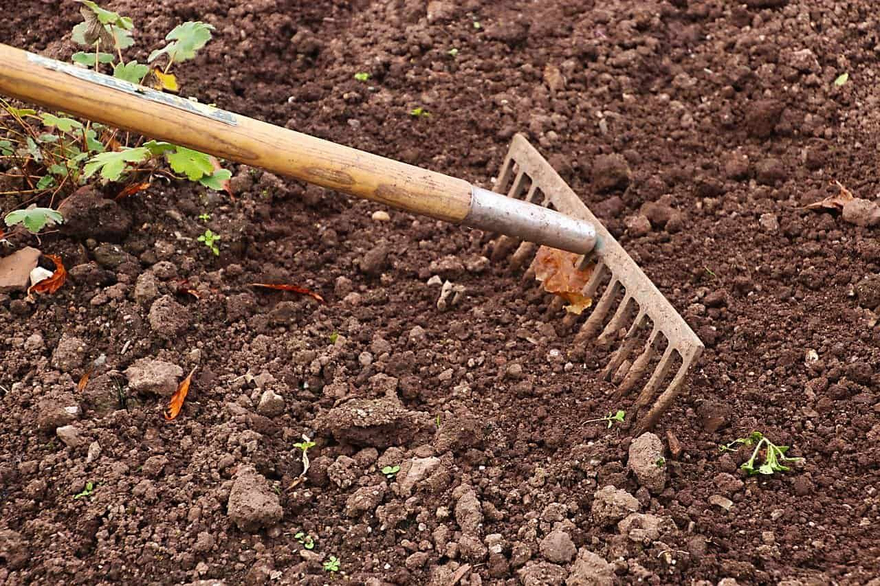 Raking The Soil To Remove Smaller Rocks In 2020 Fall Garden Vegetables Garden Soil Types Of Soil