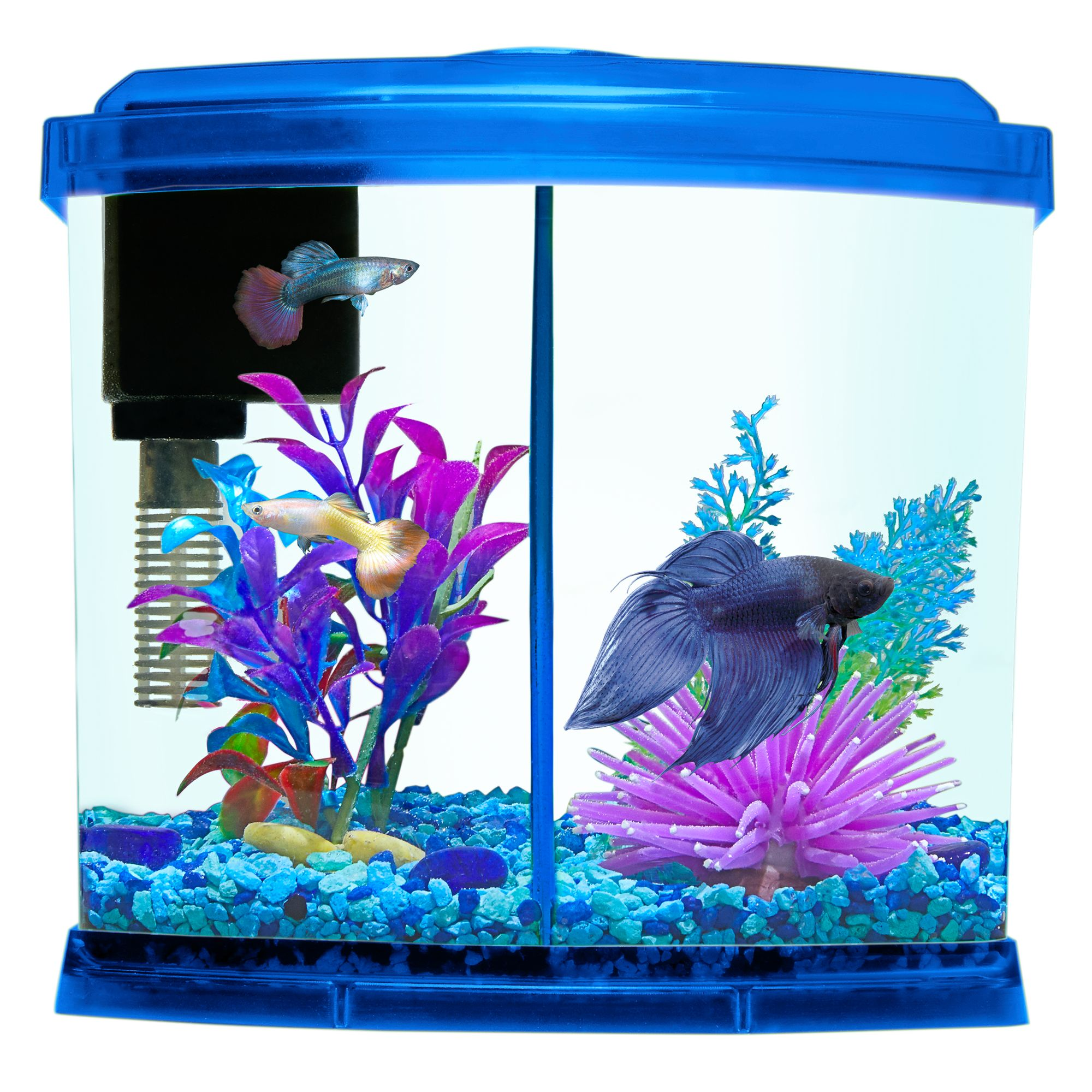 Top Fin® Liquidy Split Aquarium 1 Gallon Aquarium kit