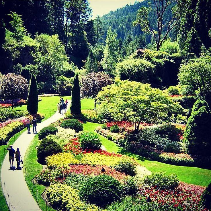 Der versunkene Garten in den Butchart Gardens auf Vancouver Island - mögen Sie es und markieren Sie Ihre Freunde, wenn Sie der Meinung sind, dass wir in unserem Leben mehr Schönheit wie diese brauchen! #verticalfarming #urbanfarming #organicfarming    - Vertical Farming - #auf #brauchen #Butchart #dass #den #der #diese #Farming #Freunde #Gardens #Garten #Ihre #Island #Leben #markieren #mehr #Meinung #mögen #organicfarming #Schönheit #Sie #sind #und #unserem #urbanfarming #Vancouver #versunkene #butchartgardens
