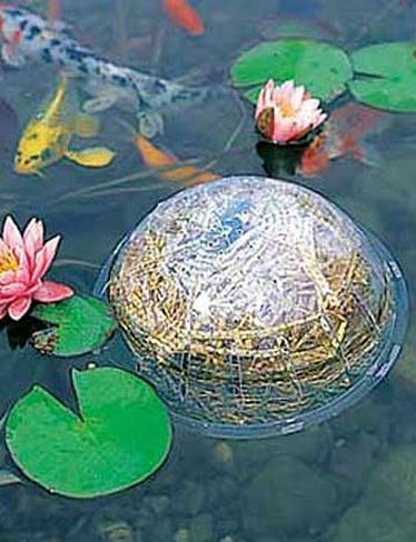 Barley Ball Use To Help Clean Your Pond Water Clean Ponds Backyard Container Water Gardens Natural Pond