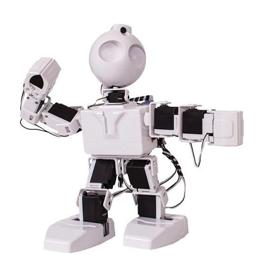 JD the Robot - Voice activated, motion sensor. This robot can be programmed to do flips, handstands and to dance!