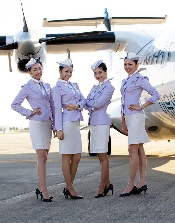 flight attendant My next Career very soon Pinterest Flight - canada flight attendant sample resume
