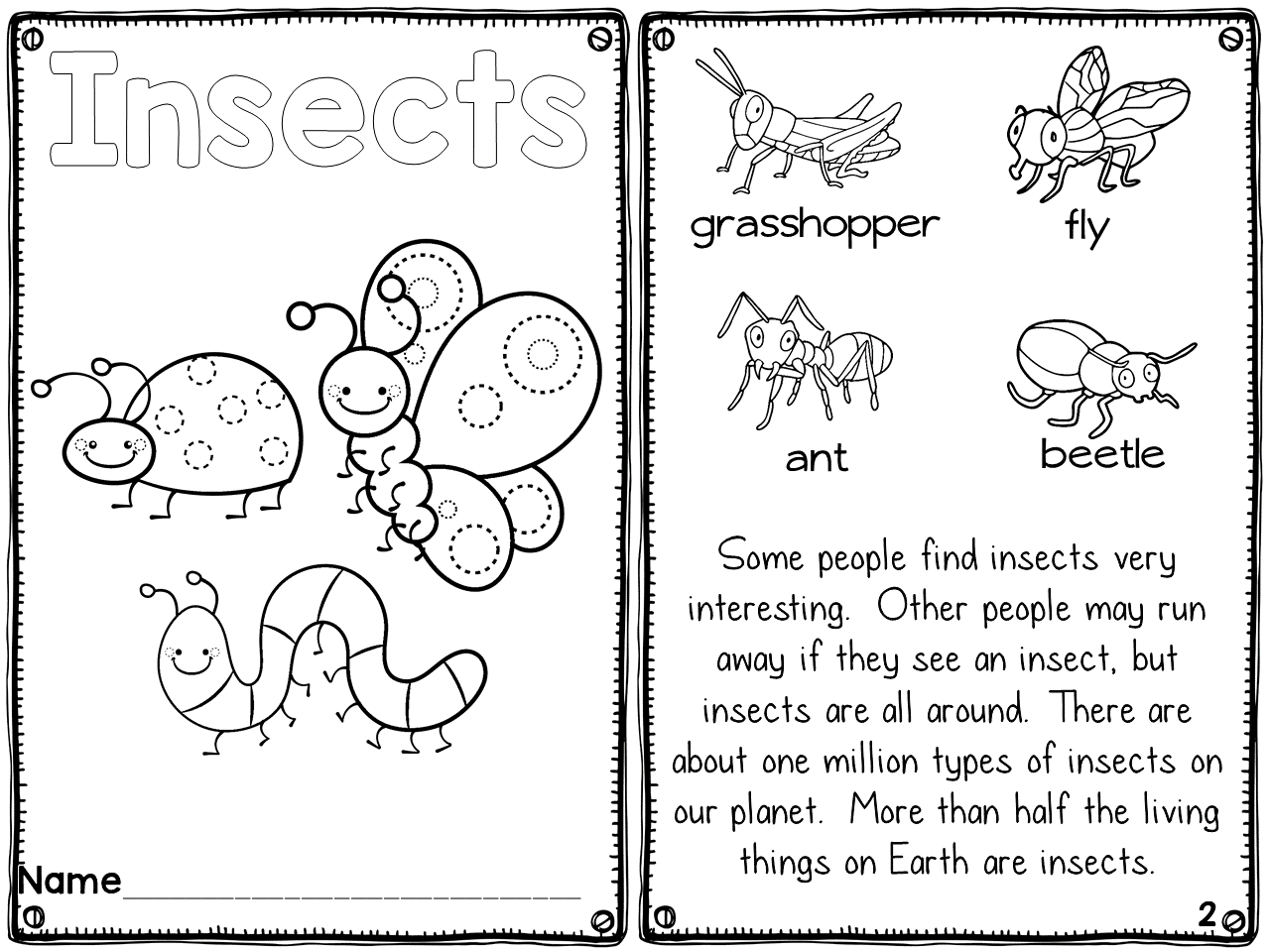 Insects Printable Reader With Differentiated Comprehension