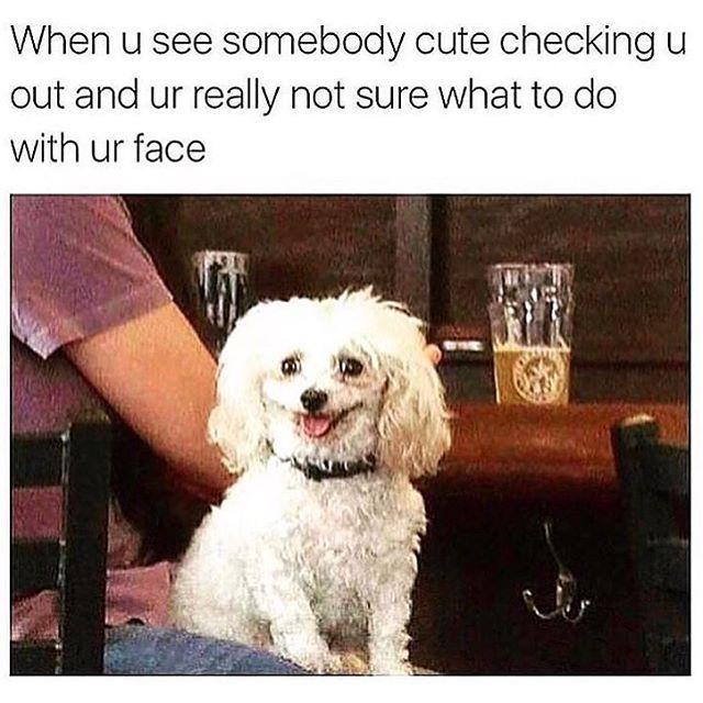 flirting meme with bread meme face images