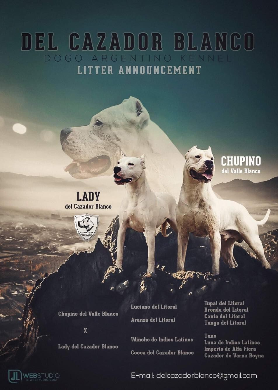 Puppies For Sale Dogo Argentino Jelena Dogshows Dogo Argentino Puppies For Sale Dogo Argentino Dog