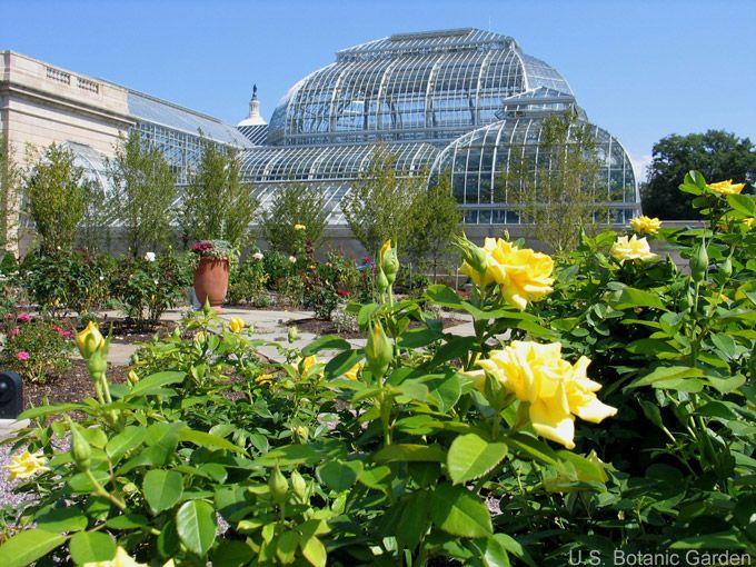 49300a20018e9d3e7a660e349aae2e4c - Best Botanical Gardens In United States