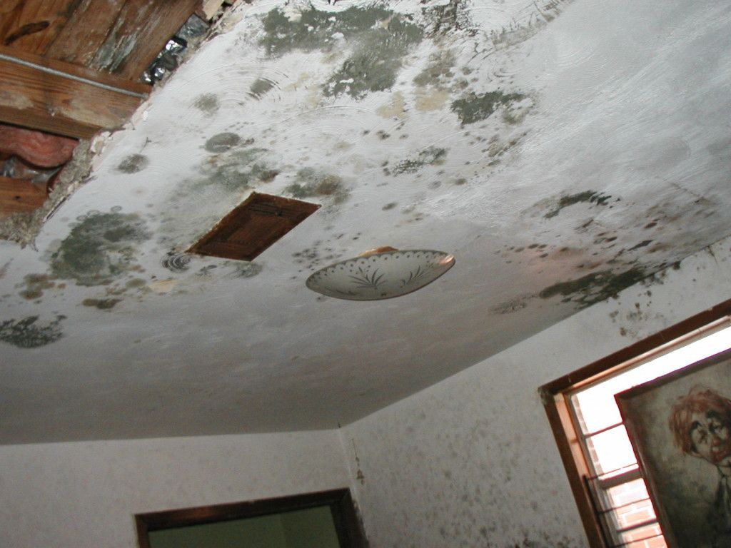 How To Texture Repair A Water Damaged Ceiling Vancouver Bc