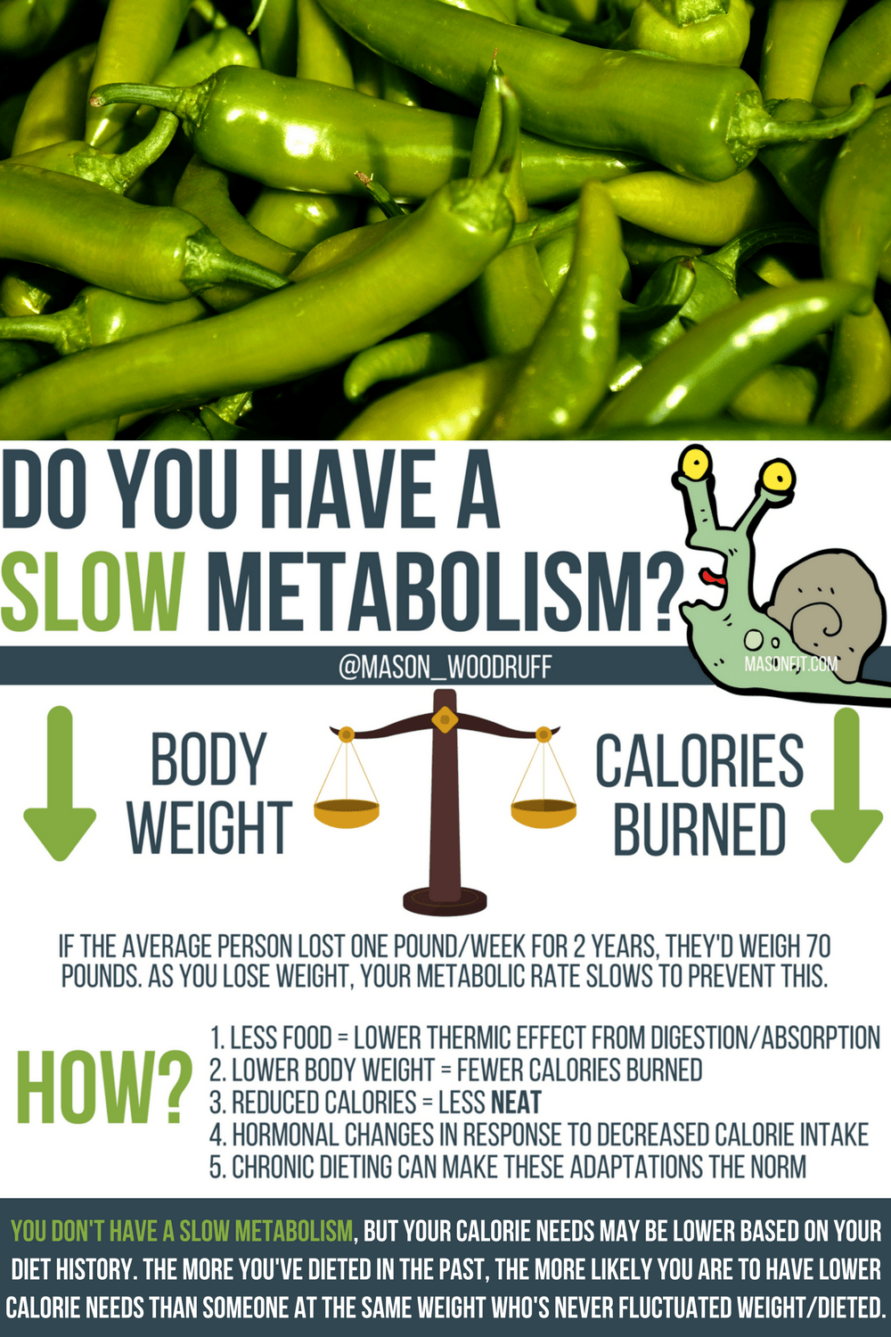 Best weight loss diet for slow metabolism