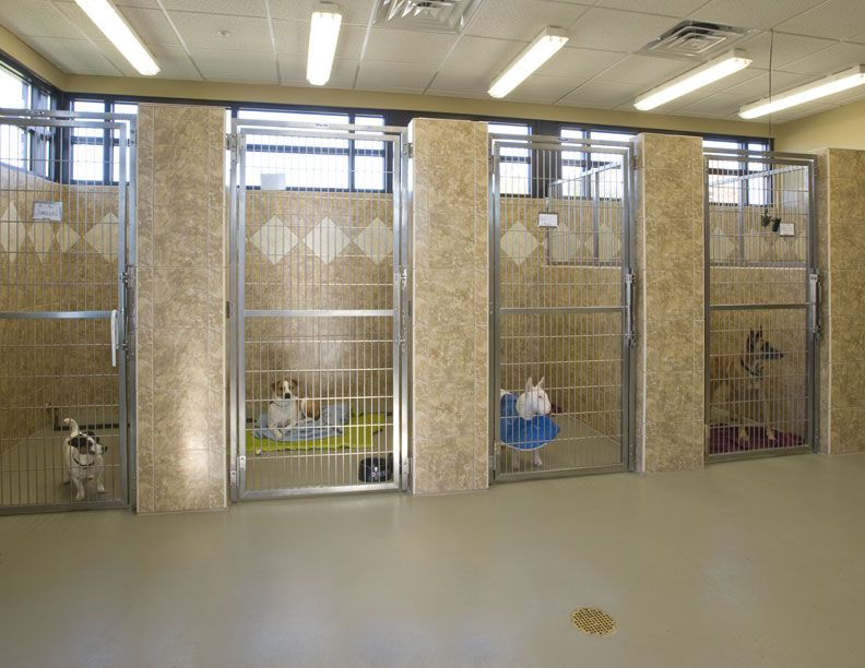 Boarding in style animal dogs pinterest for Dog kennel layouts