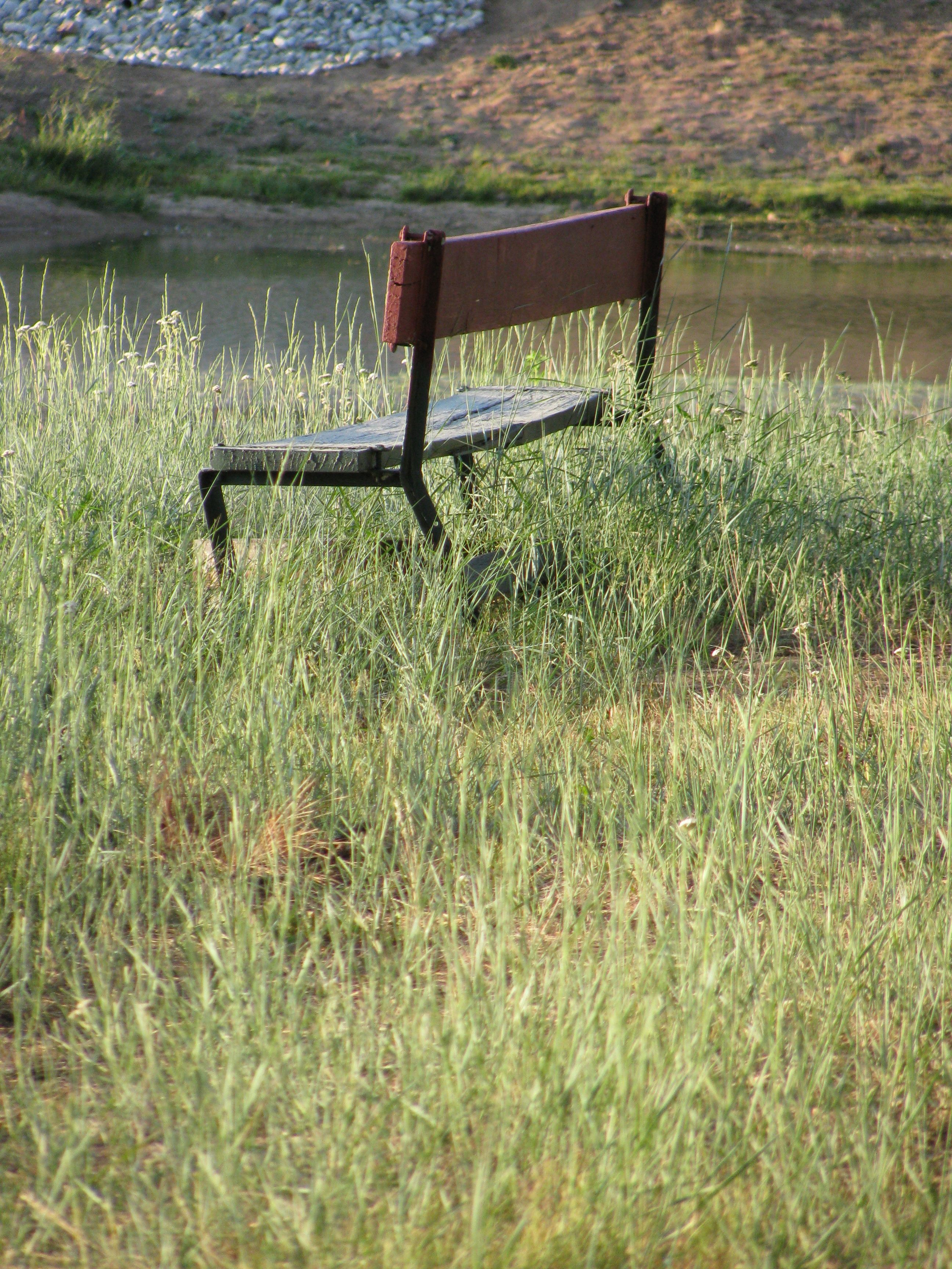 An empty bench near Big Bear Lake. Empty benches always