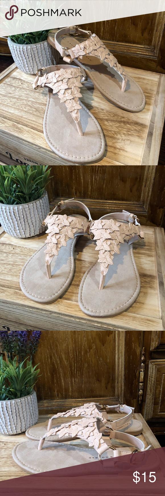 LC Lauren Conrad Brand New! | Lauren conrad shoes, Lc