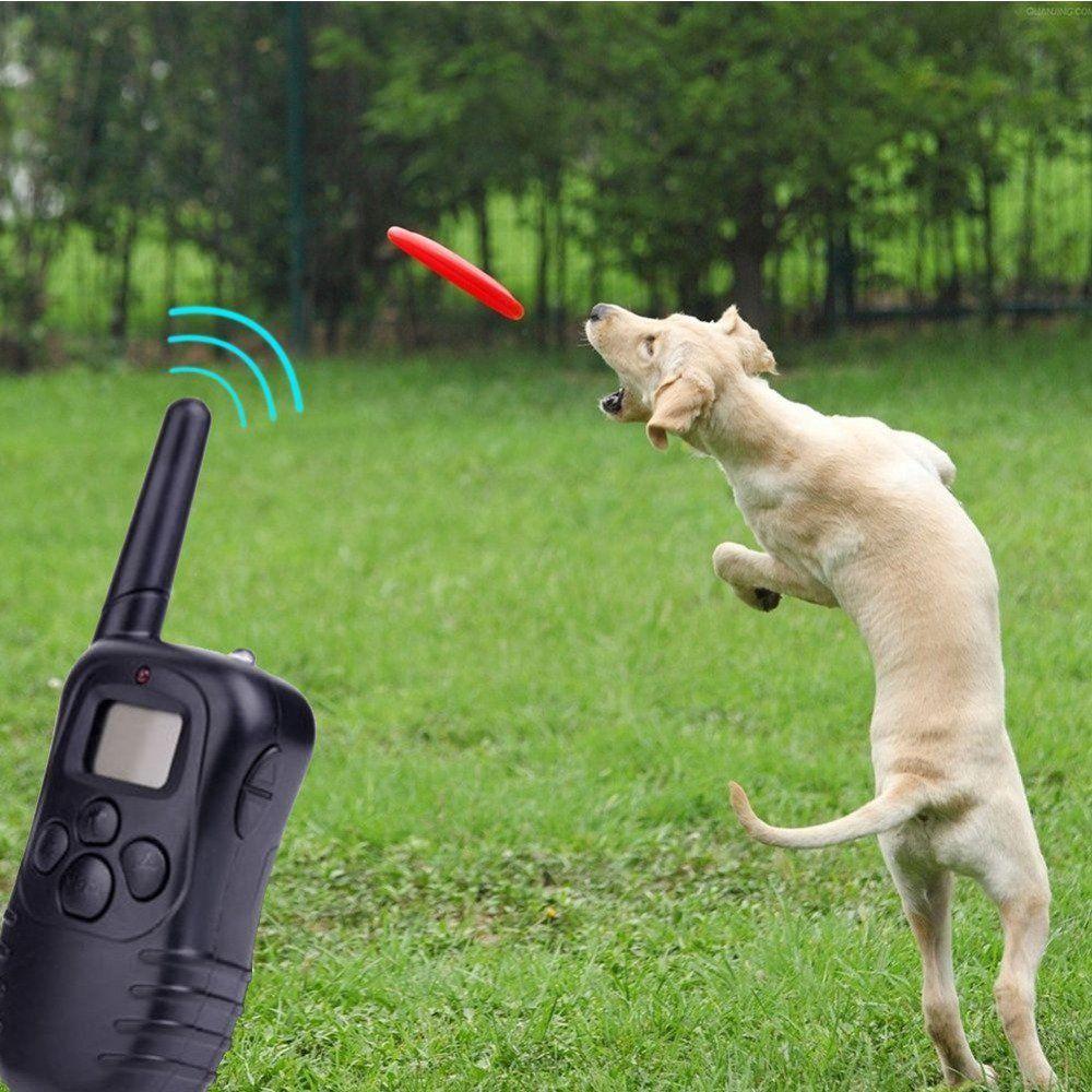 Electric Pet Dog Remote Training Collar LCD 100 LV Shock Anti Bark Battery Hot