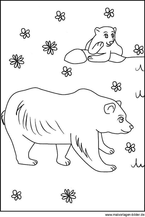 Malvorlagen Fur Zootiere Zootiere Als Malvorlage Bren Im Zoo Free