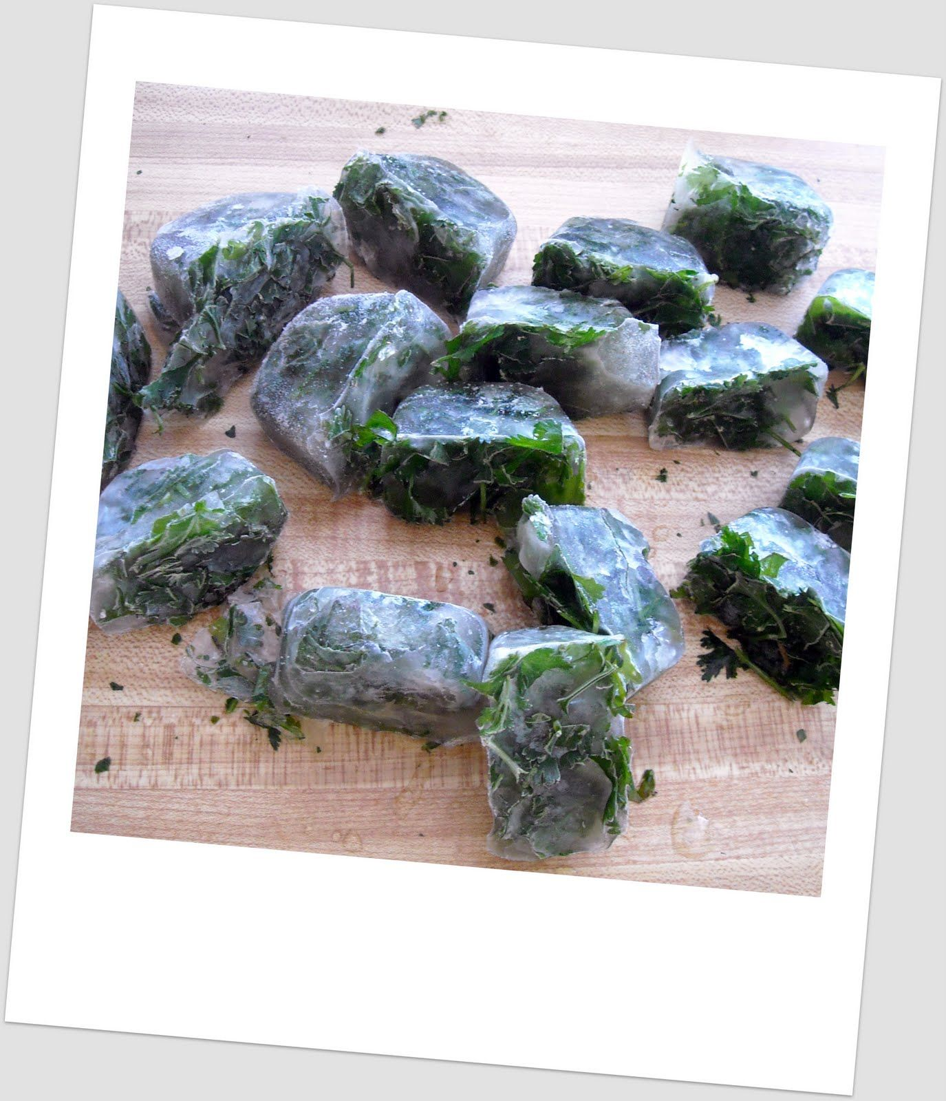 Freeze herbs in ice cube trays freezing herbs herbs