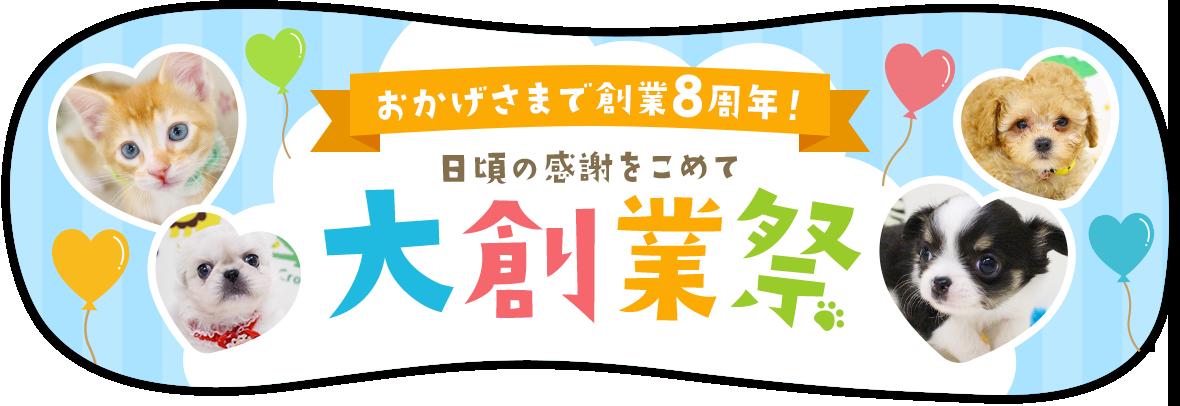 プチマリア 大創業祭バナー 猫 家 子猫 ペット