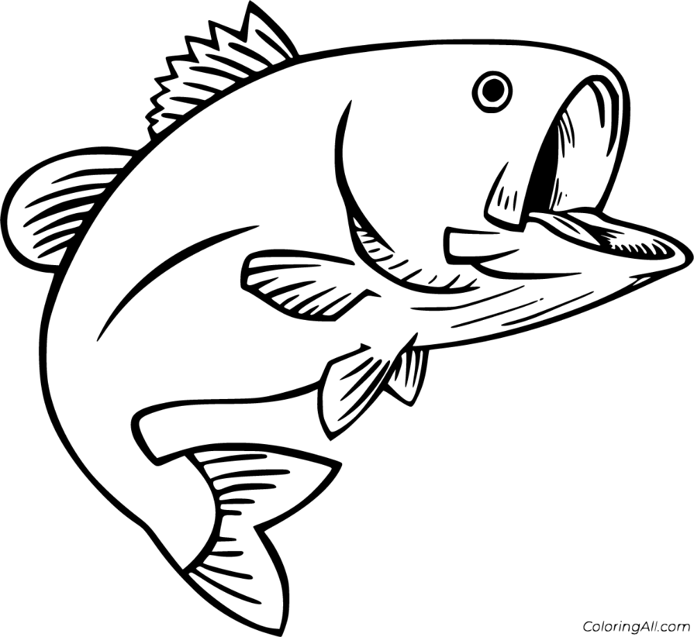 Bass Coloring Pages in 2020 Coloring pages, Fish