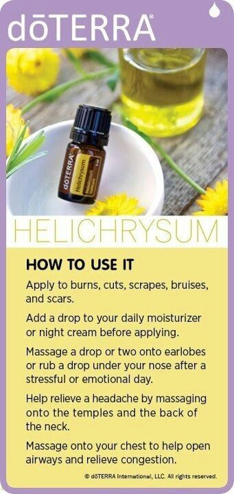 Helichrysum. How to Use It mydoterra.com/originaloils