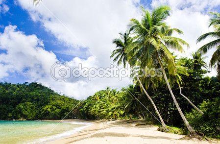 Englishmans Bay, Tobago — Stock Photo #23607277