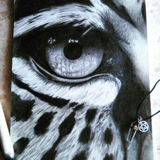 Ojo de tigre Draw  Ojos de animales  Pinterest  Ojos Ojos de