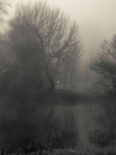 La luz viaja a la velocidad del Tiempo: Blanco al otro lado del río oscuro