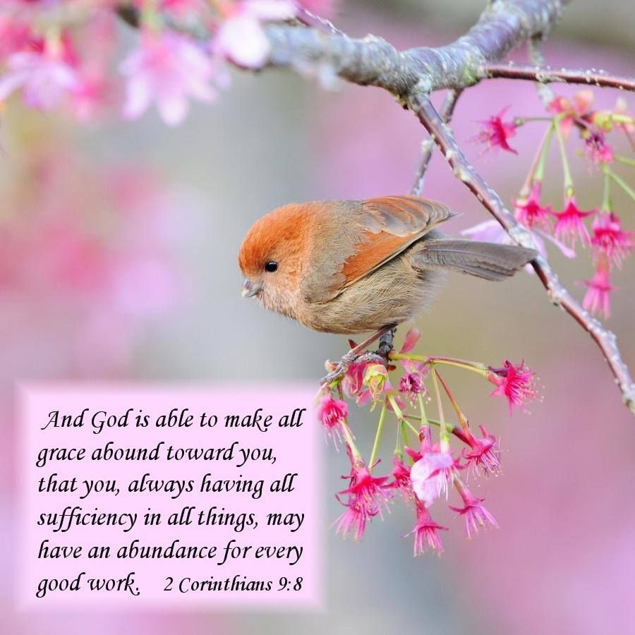 2 CORINTHIANS 9:8 - And God is able to make all Grace abound toward ...
