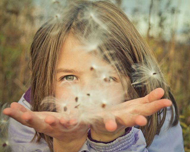Kids find magic in just about anything. These milkweed seeds kept her imagination for quite some time, and I enjoyed watching her play and discover.