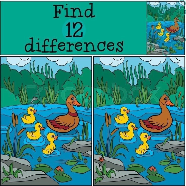 Children Games: Find Differences. Two Little Cute Duck Fly