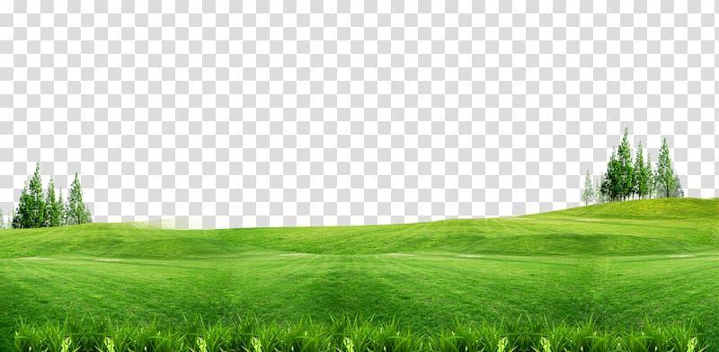 Green Grass Field Lawn Gratis Green Grass Background Free Of Material Transparent Background Png Clipart Green Grass Background Grass Background Grass Field