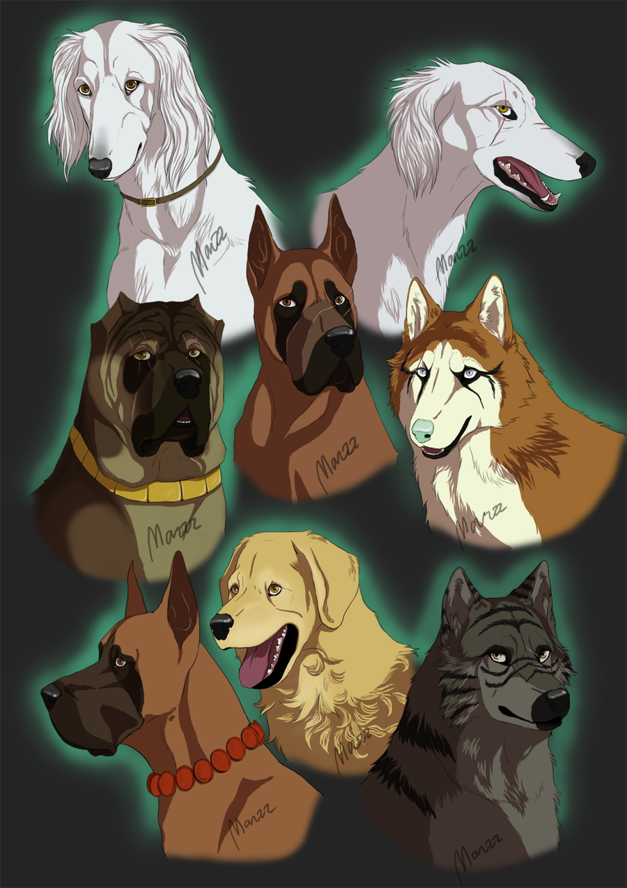 anime with animals as main characters: Ginga Characters By Marzzunny.deviantart.com On