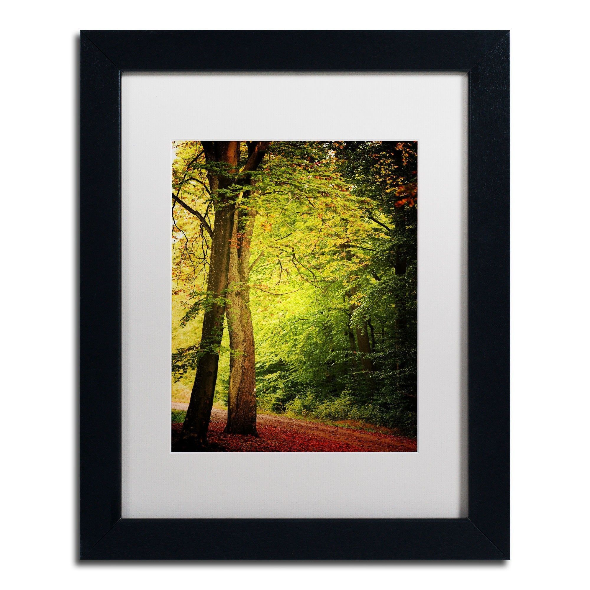 Morning Queen by Philippe Sainte-Laudy Matted Framed Photographic ...
