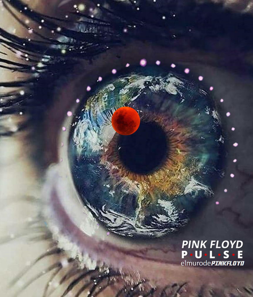 pink floyd pulse digital download