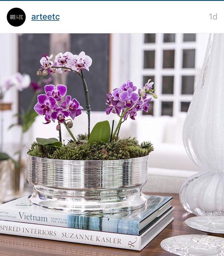 Orquidea Vaso Baixo Vasos De Flores Decoracao De Casa Vaso Prata