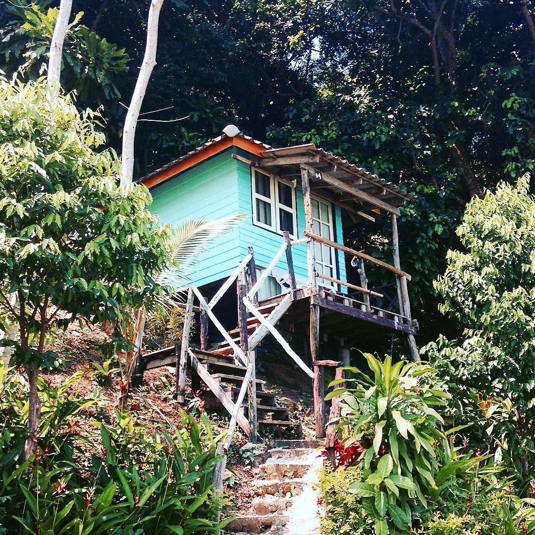 Petite cabane secrète dans la #jungle #tiny #tinyhouse #turquoise #bohemianlife #travel #hippielife #bohemian #bohofashion #secreteplace #beach #beachlife #bohojewelry by monstrodiva